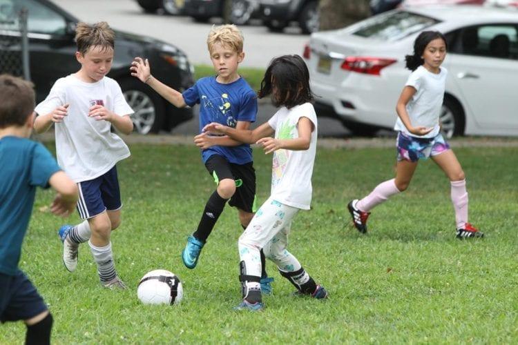 Gallery Soccer